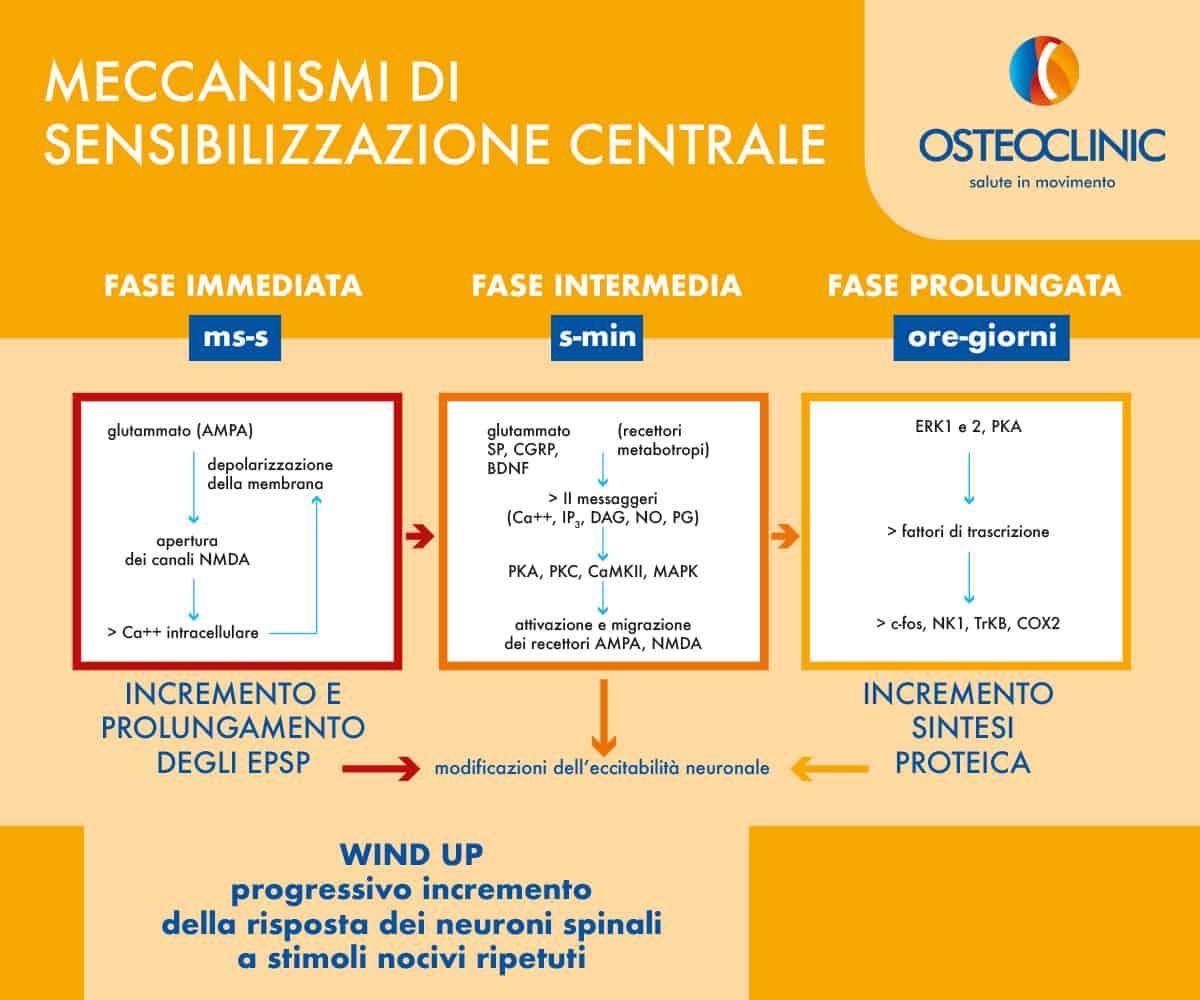 Sensibilizzazione centrale: meccanismi di sensibilizzazione centrale