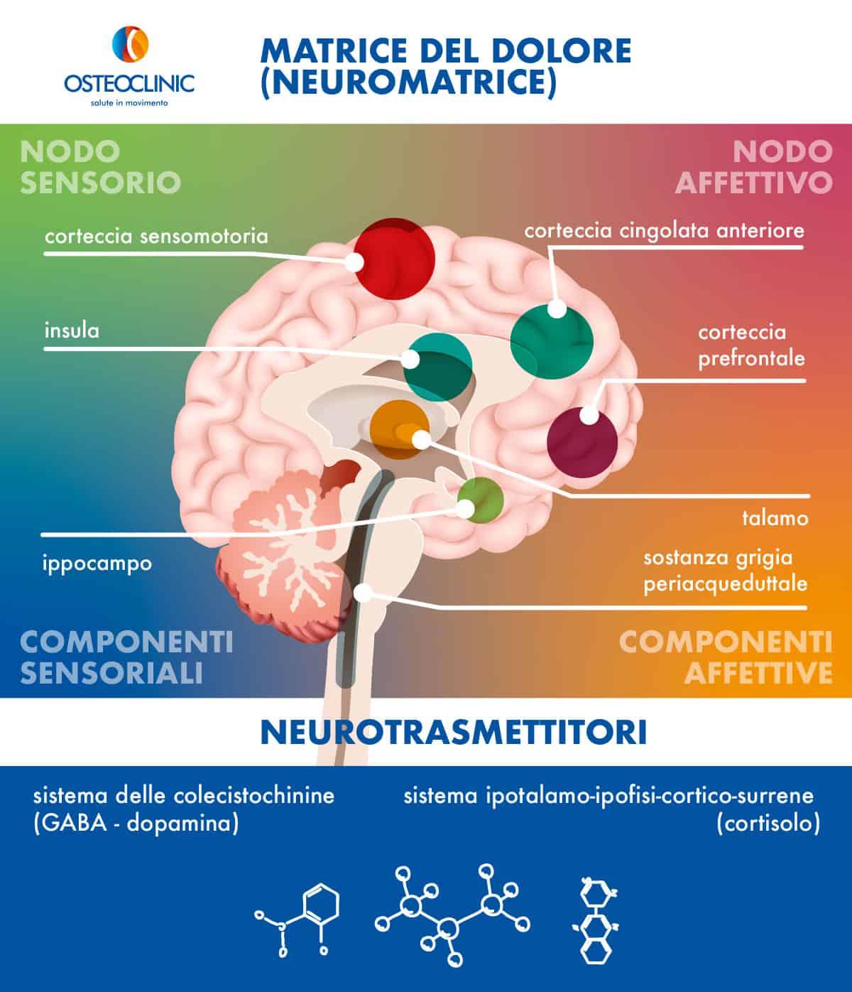 Aree corticali e neurotrasmettitori del dolore